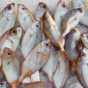 Пару рецептов рыбы на ужин