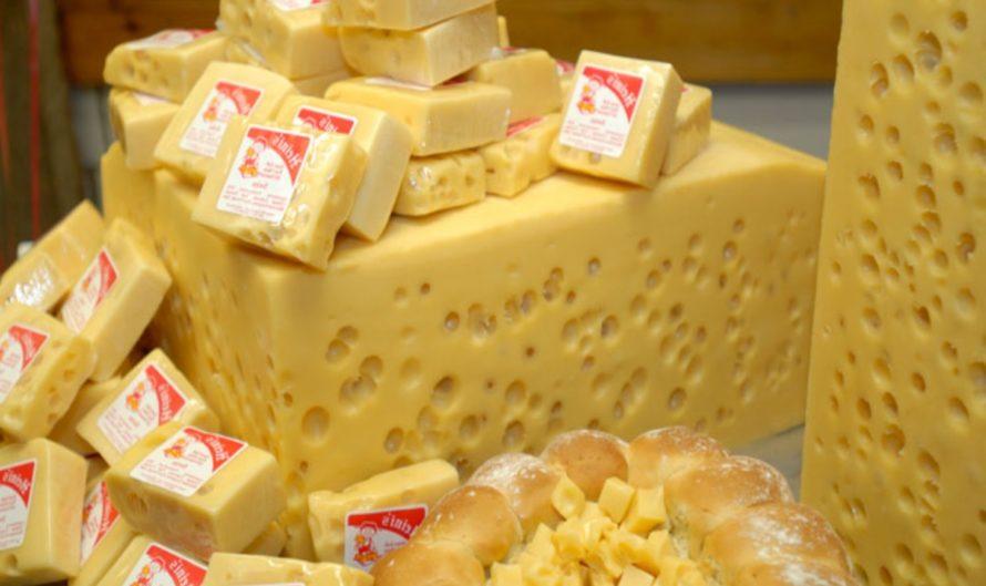 Сырное производство: вопросы безопасности